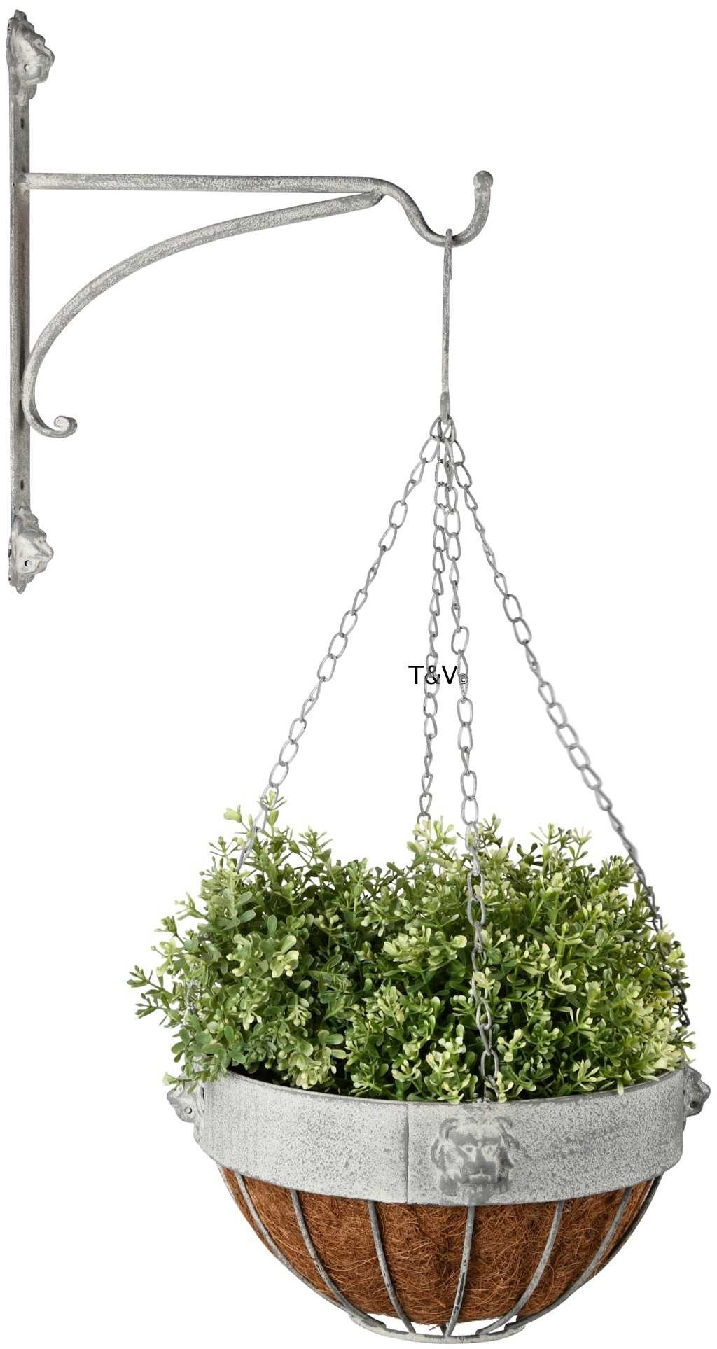 Esschert Design AM leeuw hanging basket haak (AM111 - 8714982141461) | Trends & Vision